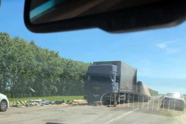 Сладкое ДТП: Трассу завалило арбузами в Новосибирской области