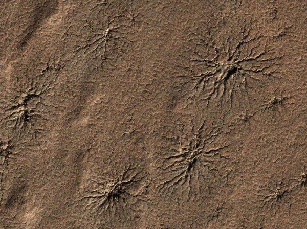 В NASA объяснили причину возникновения «ползающих пауков» на Марсе