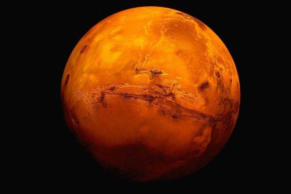 Ученые планируют отправить на Марс «российские» бактерии