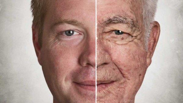 Новый препарат британских ученых поможет замедлить старение