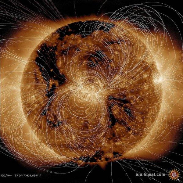 NASA показало невероятный снимок магнитного поля Солнца