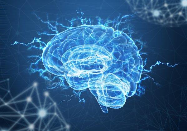 Ученые: Мозг пытается переключить внимание четыре раза в секунду