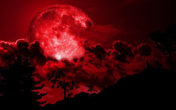 Жители Челябинска публикуют снимки «Кровавой Луны»