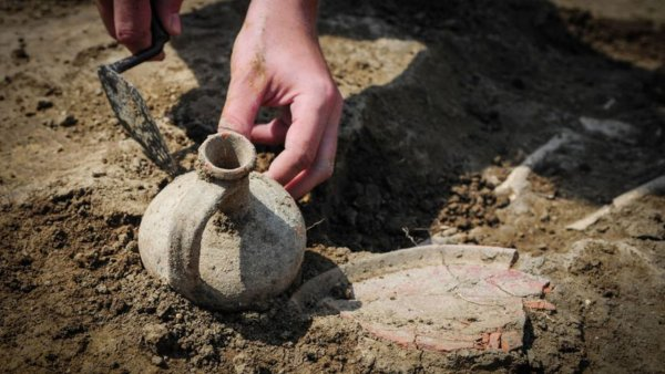 Польско-украинское объединение нашло ценные артефакты древней Ольвии