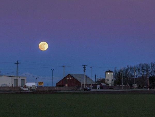 Конспирологи обнаружили на Луне обрабатываемые людьми земельные участки