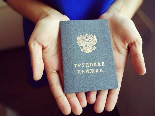 Минтруд планирует обеспечить треть россиян электронными трудовыми книжками к 2020 году