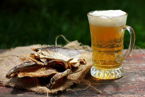 Ученые рассказали, почему пить безалкогольное пиво полезно