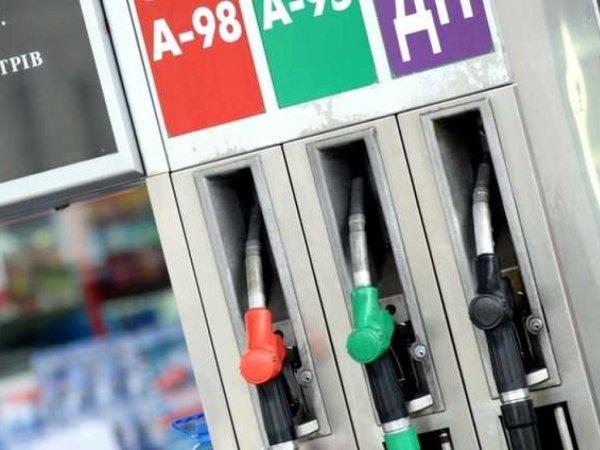 «Грабёж русского народа»: Стоимость бензина в РФ завышена в 20 раз – блогер