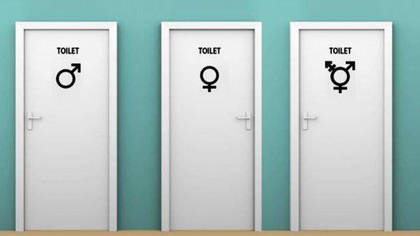Ученые научно доказали возможность существования смешанных полов