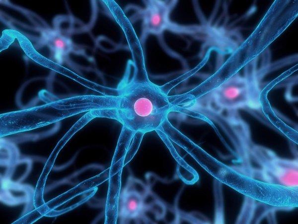 Ученые из Швеции нашли новый способ борьбы с раком