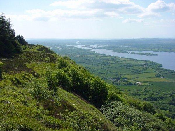 Ученые нашли доказательства целебности ирландской почвы