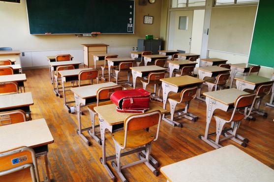 Занятия в тюменских школах отменили