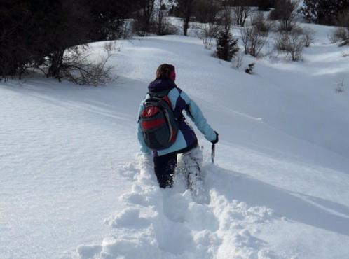 Со снегом беда: бездействие коммунальных служб возмутило тюменцев