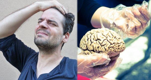 Учёные нашли способ «отключить» эмоциональную реакцию на боль