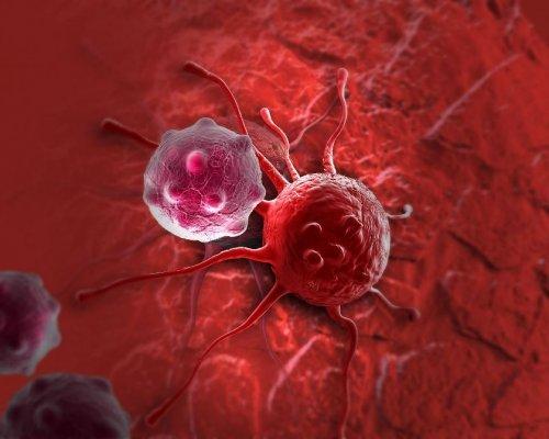 Ученые научили организм «пожирать» раковые клетки