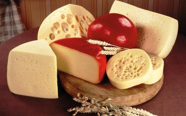 Тюменский фермер освоит производство сыров с длительной выдержкой