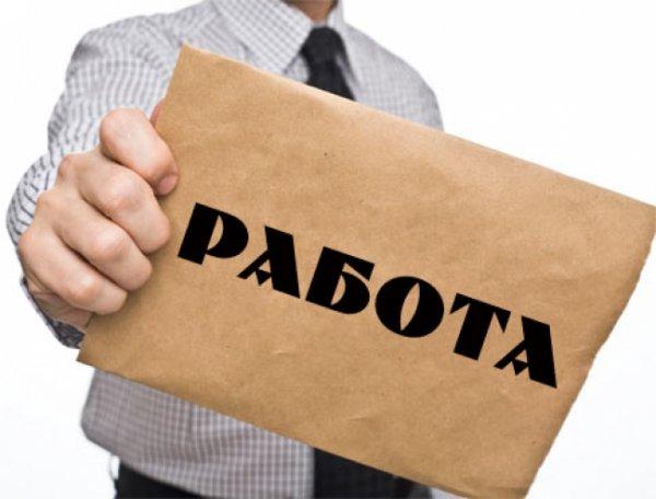Владимир Ефимов прокомментировал уменьшение количества безработных в Москве