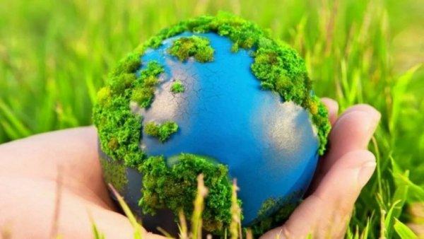 Человечество исчезнет через 30 лет: Учёные заявили о массовом вымирании и составили план спасения Земли