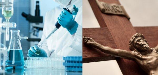 Пошли против Бога: Учёные начали создавать детей-мутантов путём совмещения генетического материала