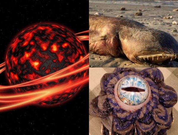 Монстры всплывают: Нибиру активизировала «коконы» пришельцев ради захвата Земли