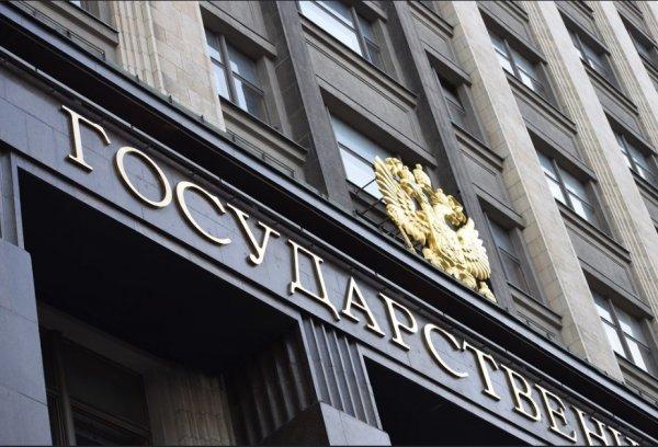 Деньги на ветер? Госдума намерена потратить 17,4 млн рублей на статистику о своей работе