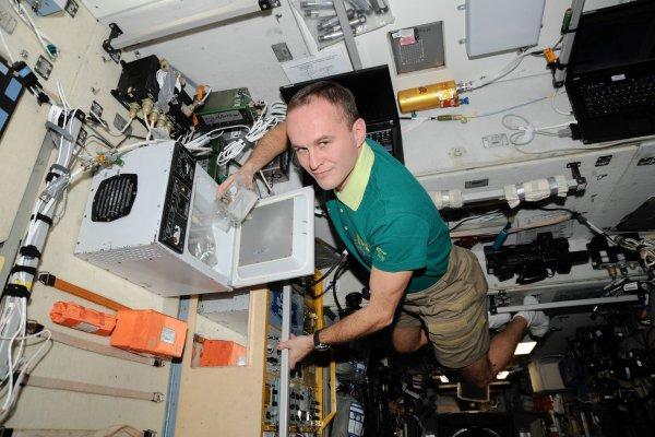 Водоросли на МКС будут вырабатывать кислород