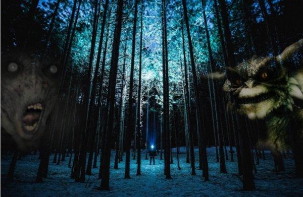 Гоблины возвращаются домой: Подземные существа начали массово появляться в лесах Сибири