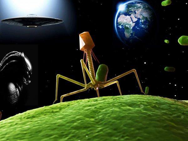 Страшнее затмения? Вирус из космоса истребит людей быстрее пришельцев