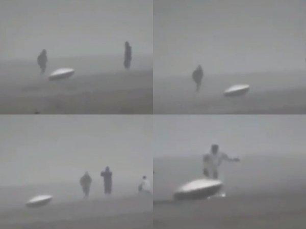 Пришельцы сошли сума после шторма— ВКрыму туристам под ноги бросаются ошалевшие НЛО