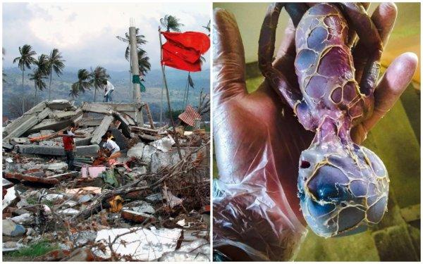 Нибиру уничтожит жизнь на Земле: Первое мощное землетрясение Планеты Х прогремело в Индонезии
