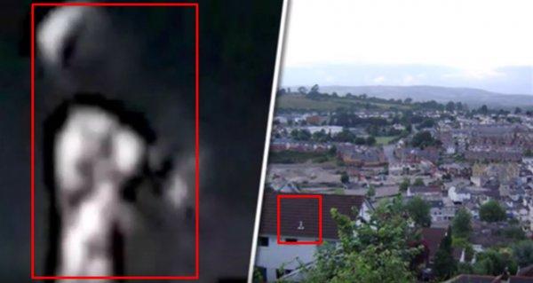 Заразился от человека? Фото беременного пришельца «взорвало» Сеть