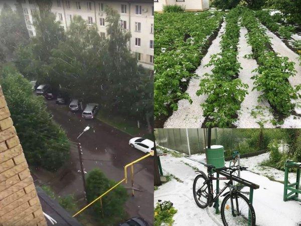 «Снег пойдёт в июле»: Предсказание Распутина о конце света начало сбываться в России