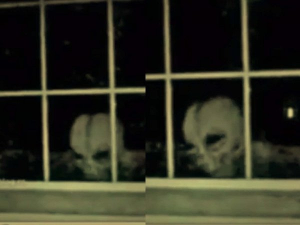 Гуманоид в окне: Беглый пришелец ищет помощи у дачников Подмосковья
