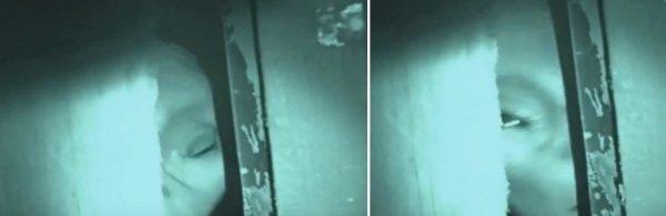Пришелец-беглец из Зоны-51 забрался в дом и напугал хозяина