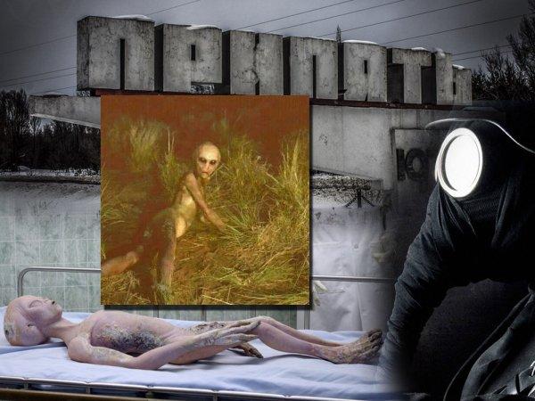 Жертва экспериментов: В Чернобыле нашли пришельца-инвалида, сбежавшего от учёных