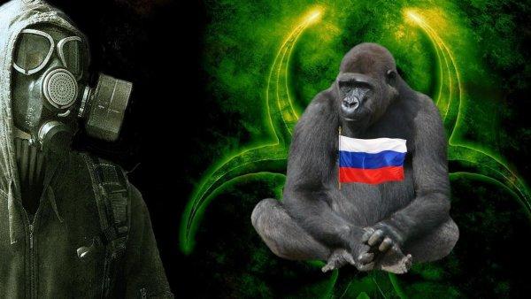 Россия поможет Китаю создать гибрид человека и гориллы для битвы с пришельцами