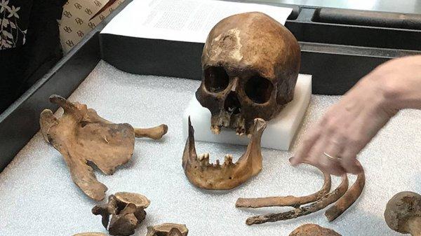 Вампиры-Аннунаки! В Сибири нашли свежие останки пришельцев-кровососов
