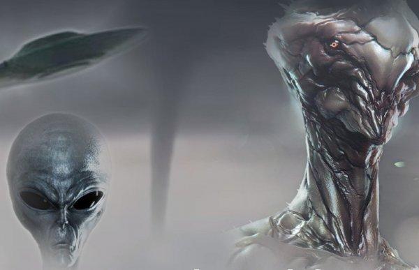 «Ночной дозор»: Пришельцы оккупировали дронами территорию Сочи