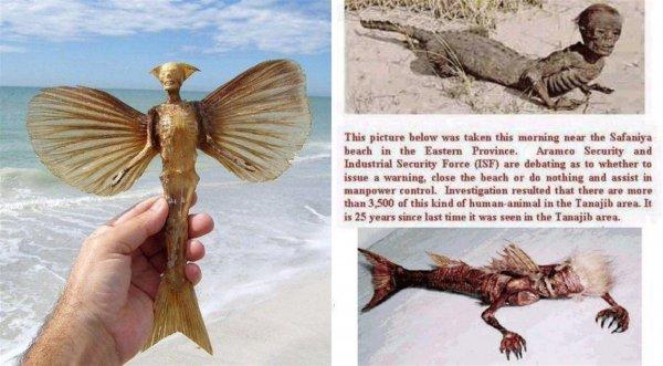 Амфибии Нибиру открыли охоту: В Уфе рыбаки едва не стали добычей мутантов Планеты Х