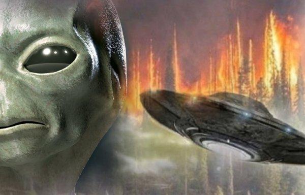 Сибирь спасена! Нибируанцы приступили ликвидировать последствия пожара