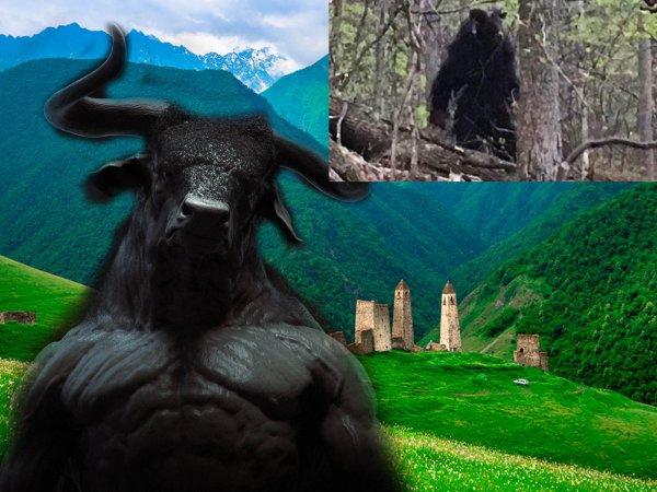 Задрал лошадь и чуть не убил женщину: Кавказский минотавр-людоед напал на горную деревню в Ингушетии