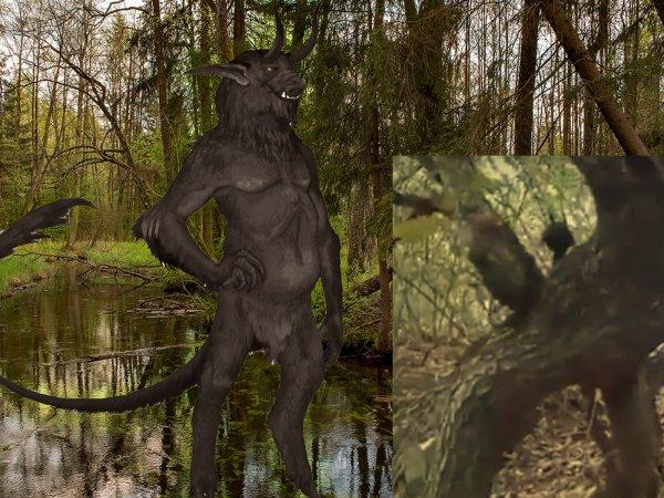 В лесах Сибири нашли чёрта: Демоны собираются устроить шабаш в России