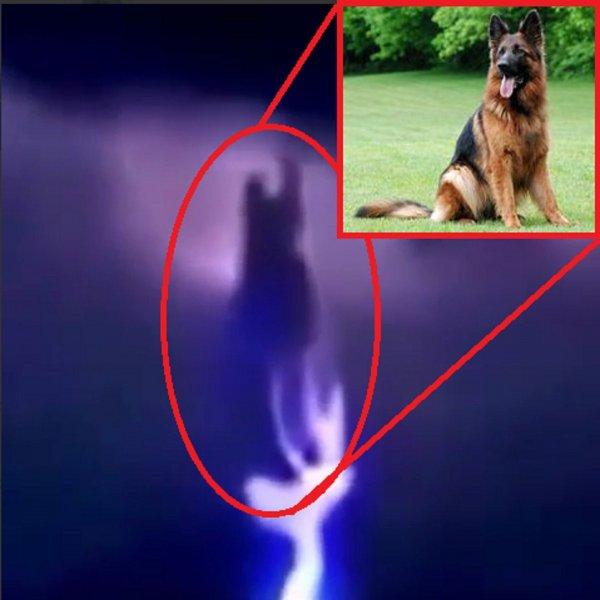 1 сентября – конец эпохи людей: Огненная собака над Москвой принесла близнецов-собакорылов