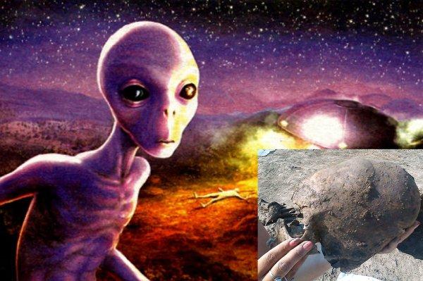 Из-под земли достали: в Хорватии случайно наткнулись на останки древних пришельцев