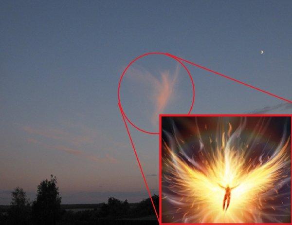 Светило погибло: Ангел Солнца над Россией возвестил об Апокалипсисе