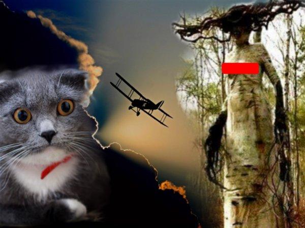 Дриада Нибиру: Горгона–мутант найдена в Карелии