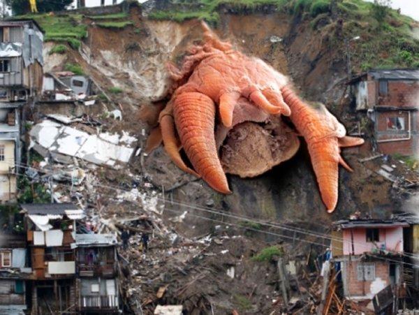 Жертв уже тысячи: Из-за оползней в Китае проснулись допотопные черви-мутанты