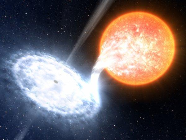 Звезда-зомби: Мертвое светило сожрет Солнечную систему – эксперт