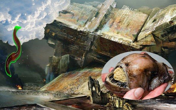 Мозгожёры идут: Могильник биоотходов пришельцев взорвался из-за магнитных червей