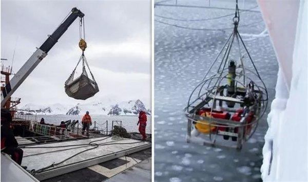 В Антарктике нашли «Людей Х» возрастом 30 млн лет